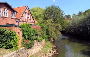Flusslandschaft der Jahre 2016/17: Trave (Stadtarm bei Bad Oldesloe)
